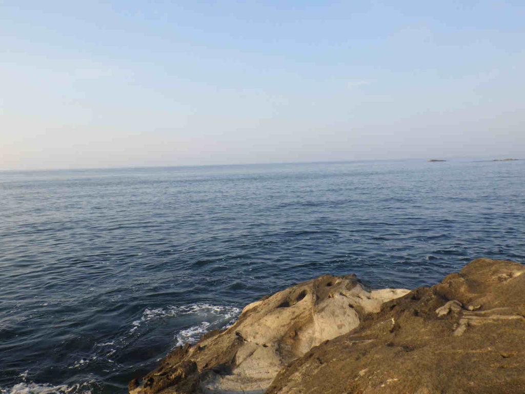 三浦半島の磯で青物狙いでムツ