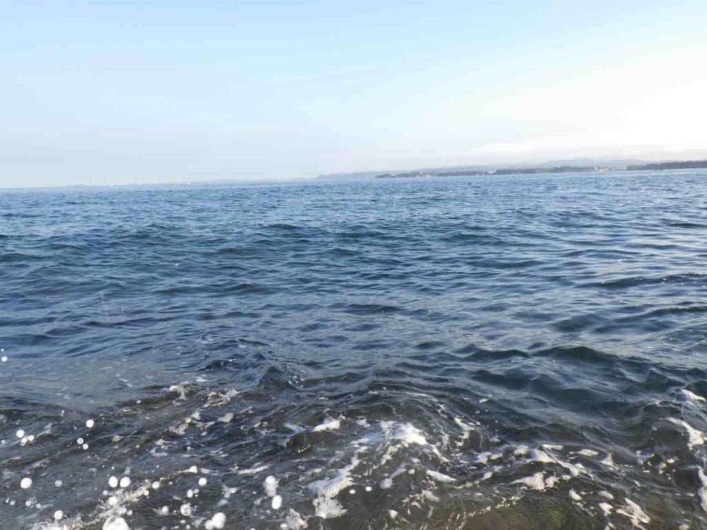 三浦半島の磯でカサゴ