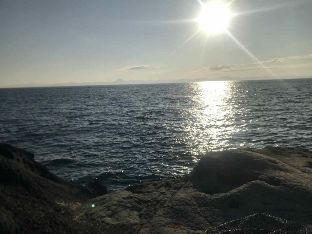 三浦半島の磯でワラサをバラした!