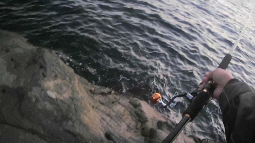 三浦磯でショアジギングしてイナダが釣れた