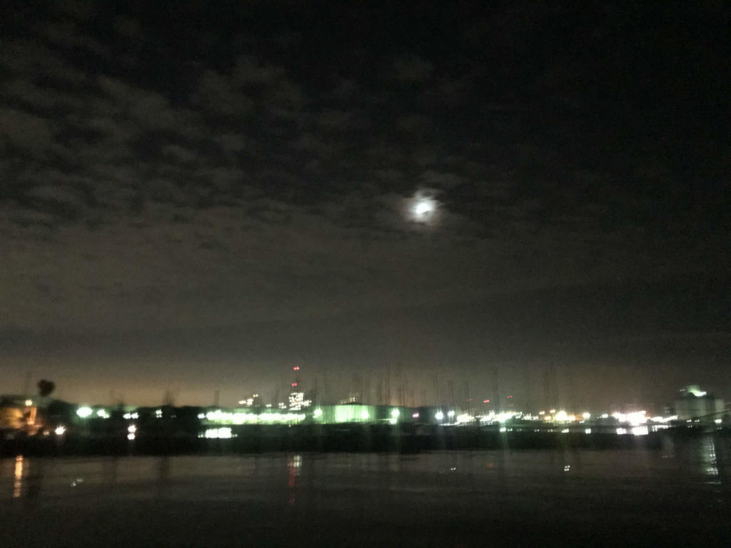 爆風の中横浜アジング