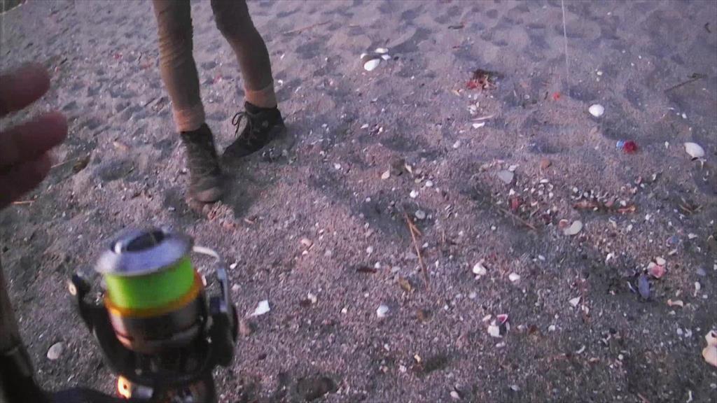 朝マズメの砂浜サーフでヒラメがHIT!