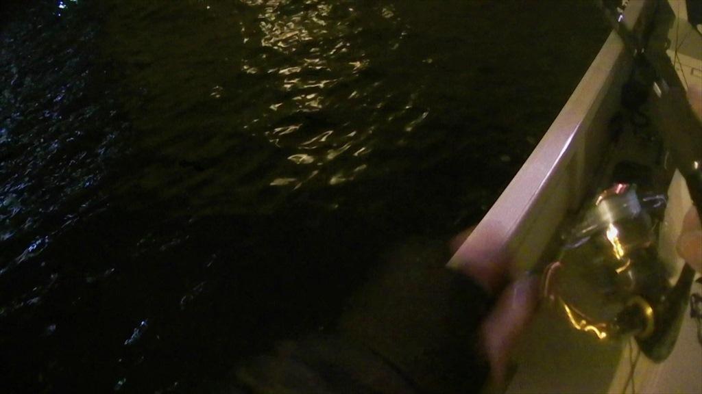 東京湾ボートアジング不良!外道多し!