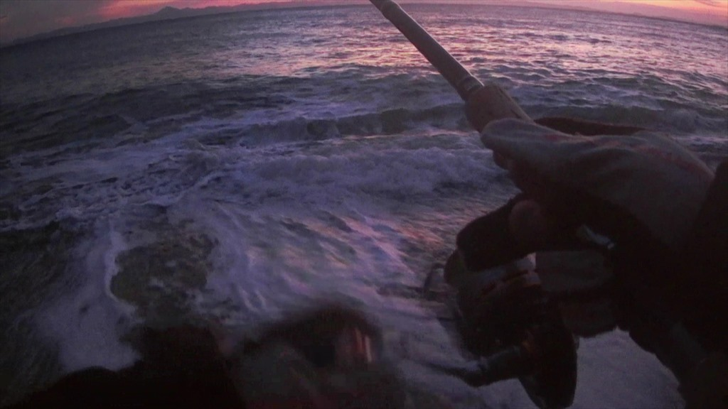 三浦半島のサーフでヒラメが釣れた!