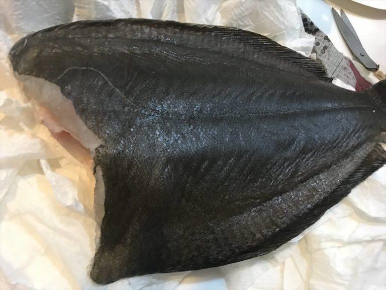 お刺身用におすすめ!釣った魚を日持ちさせる冷蔵保存方法!
