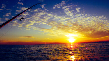 神奈川県一級釣り場の福浦岸壁が『金沢海釣り施設』となって復活へ!