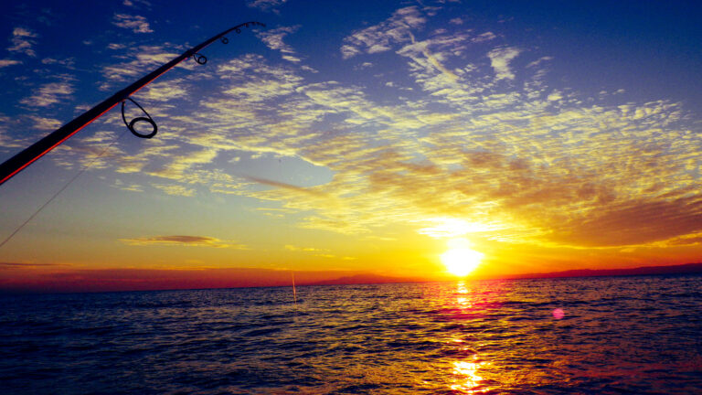 福浦岸壁が金沢海釣り施設として復活!