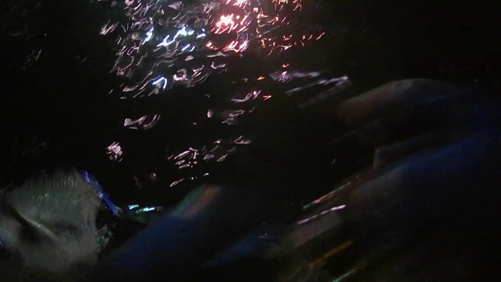 超激シブの横浜ボートアジング