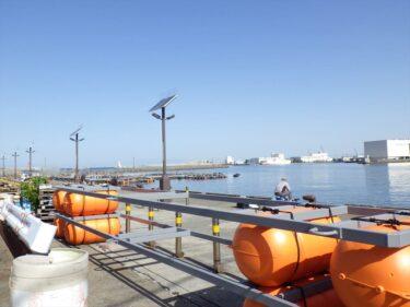城ヶ島岸壁の釣り事情