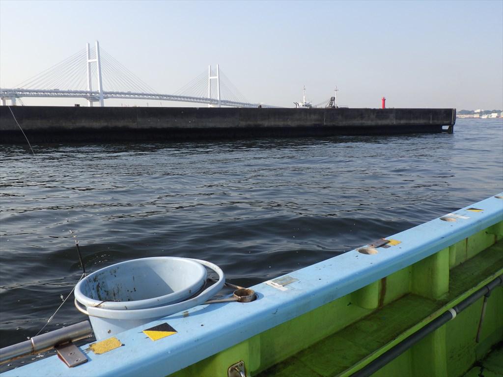 初夏の東京湾ライトアジ!なかなか口が使わずポイント探しに迷走!?