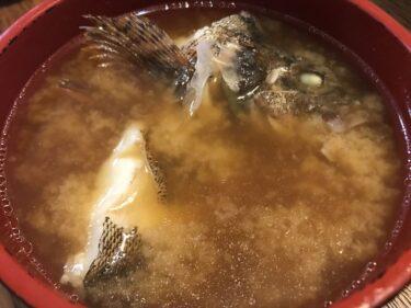 【釣り料理】カサゴの味噌汁が美味すぎた件。