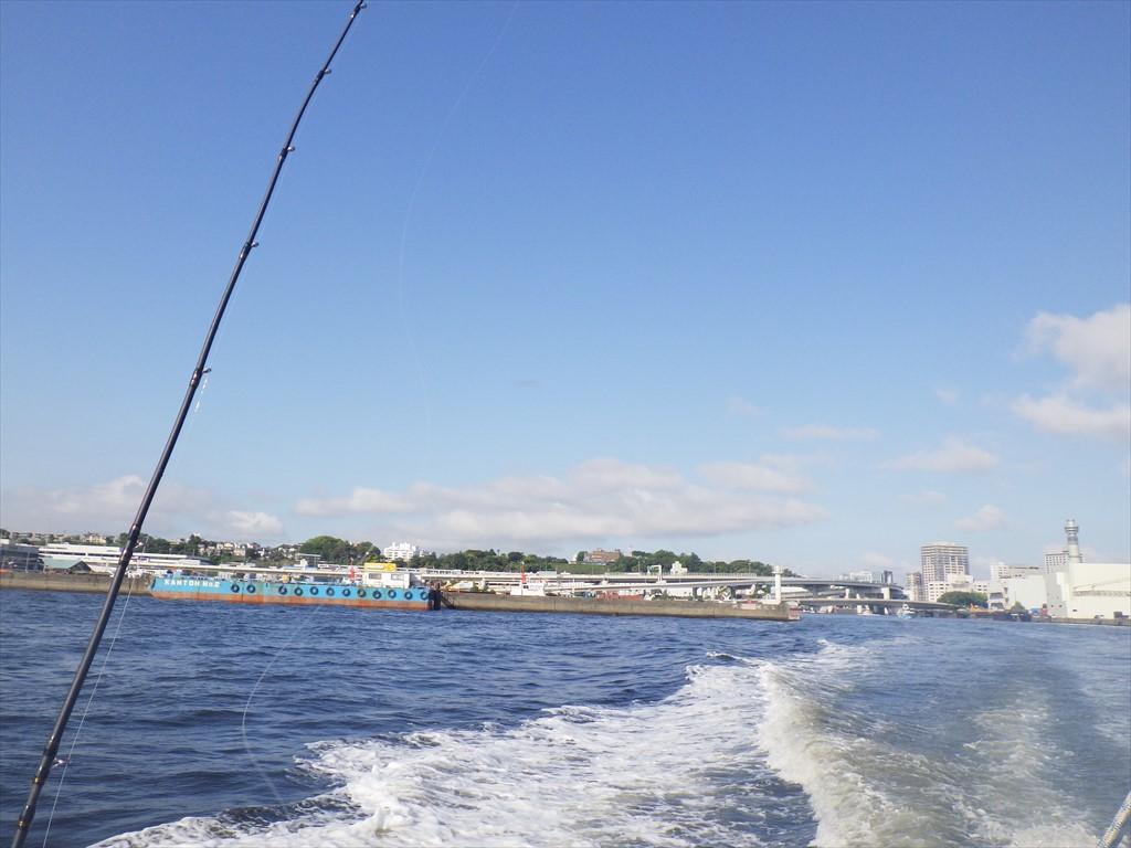 東京湾ライトアジ大漁!自己新記録!