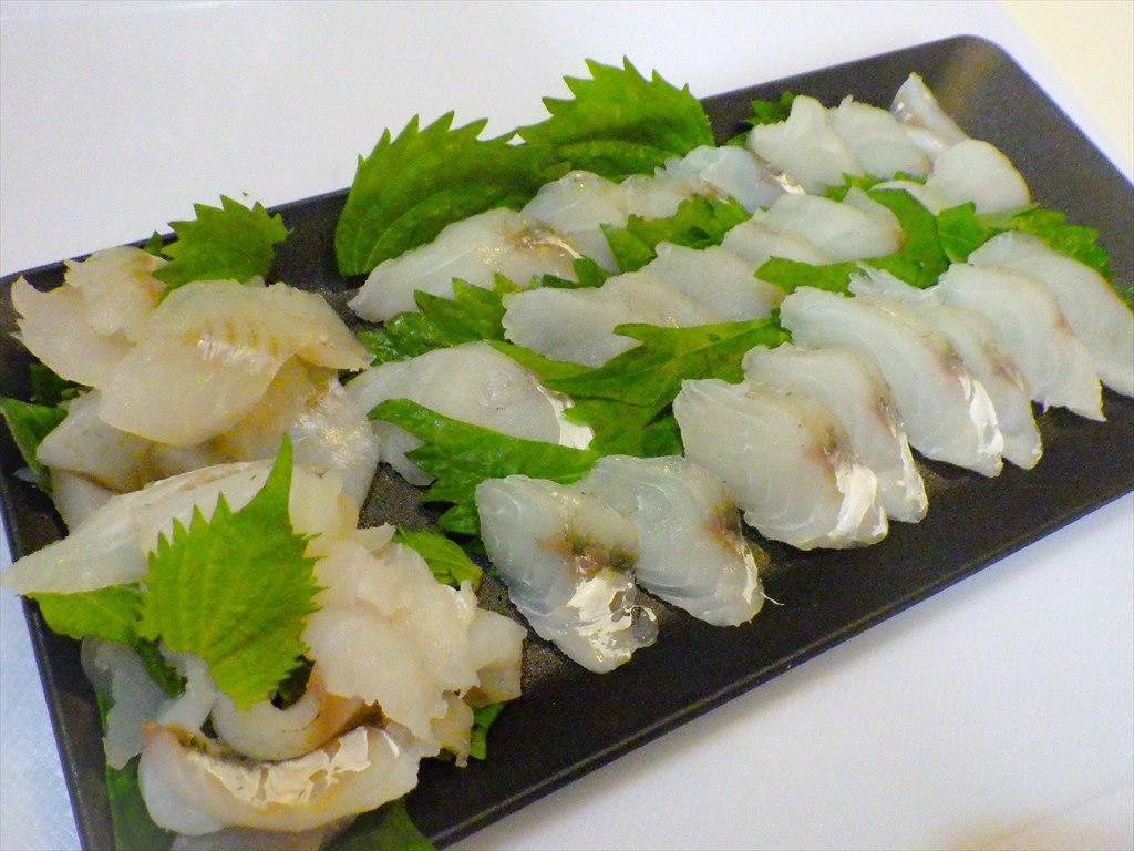 マゴチのさばき方!お刺身が美味しい!