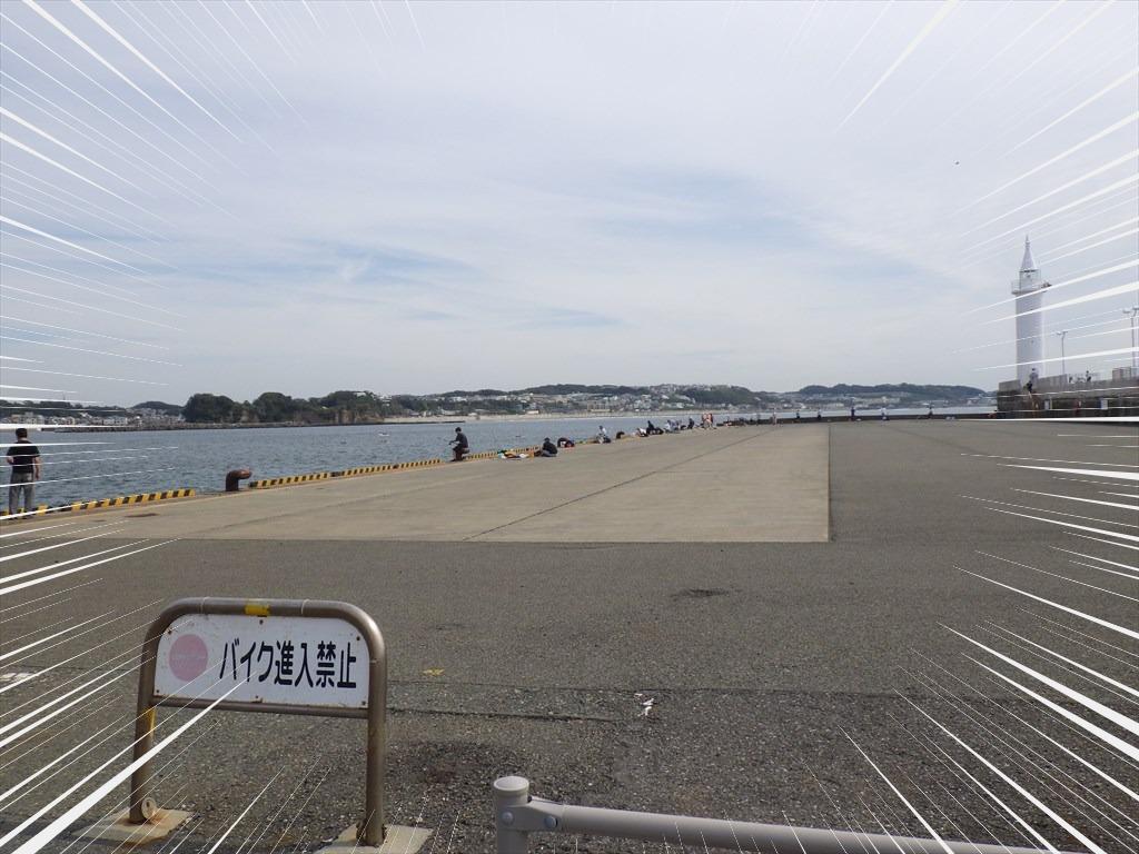 江の島の駐車場が開放!湘南大堤防で釣り可能!