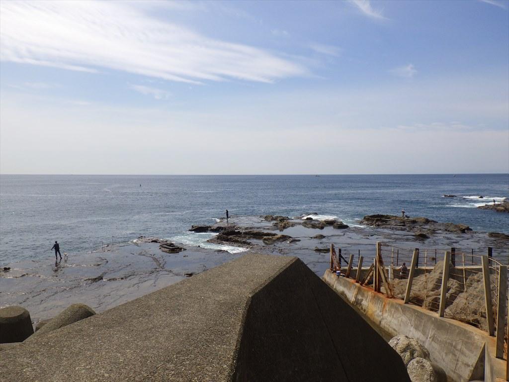 江の島の大人気釣りスポット!湘南大堤防と表磯が開放!釣果状況