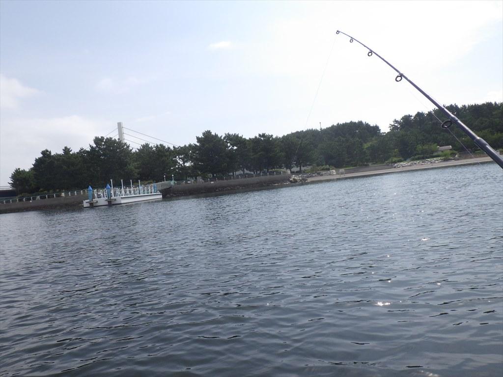 海の公園でサップフィッシング!禁断のハゼ泳がせでマゴチ釣り!